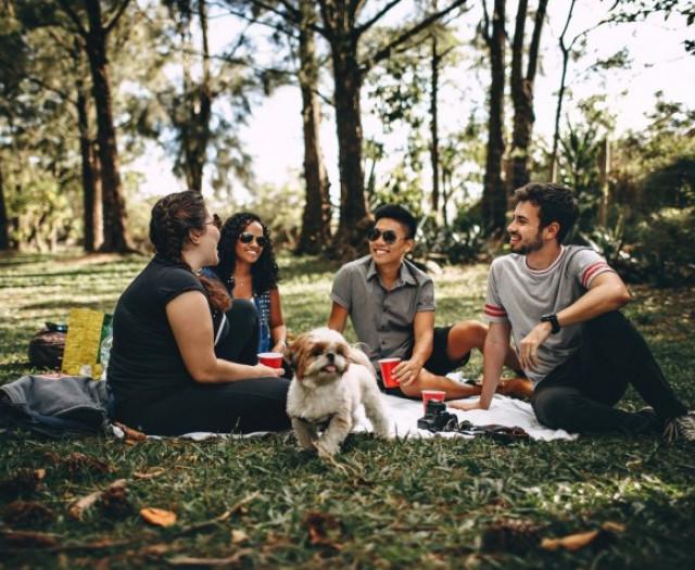 Как завести новых друзей в университете?